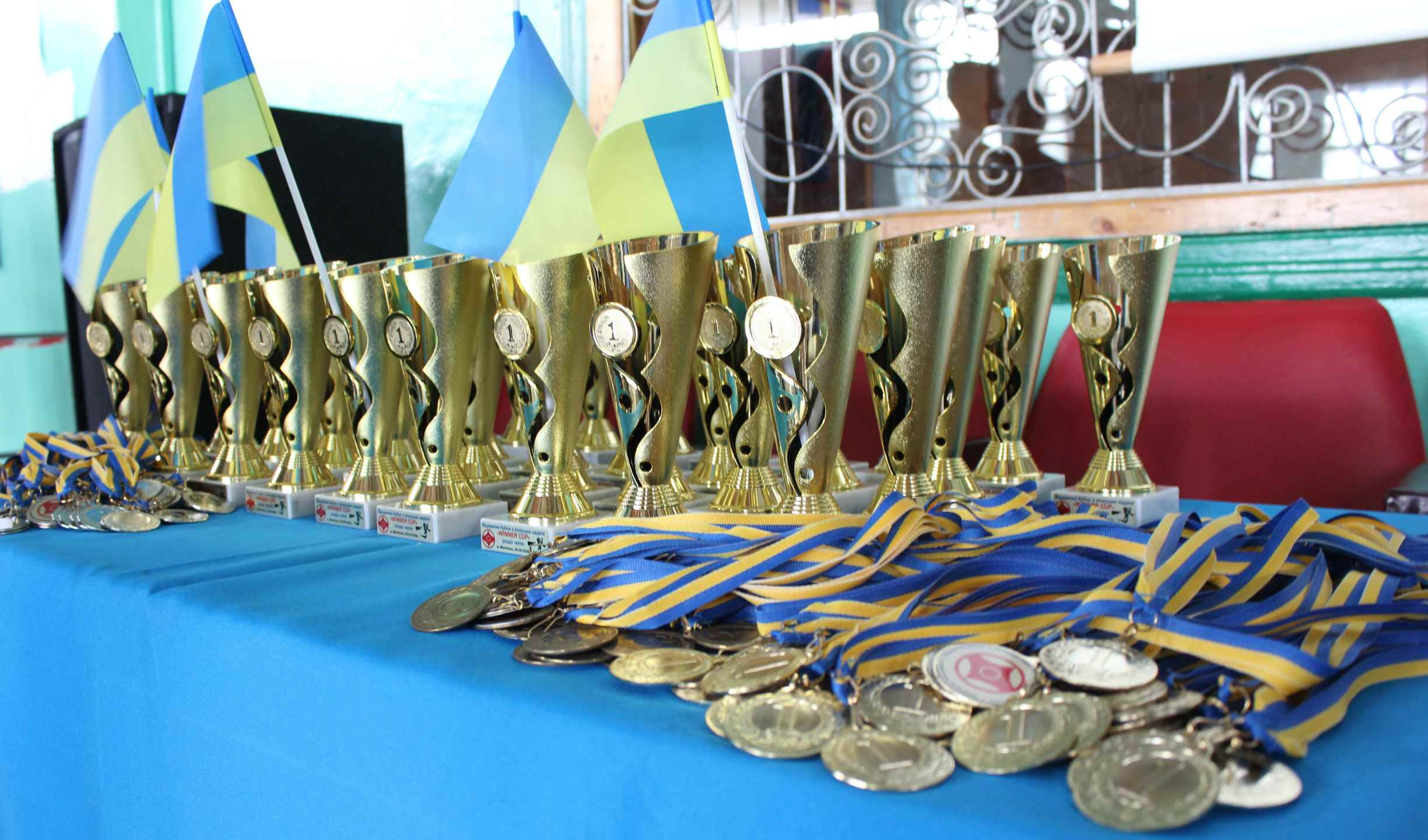 Соревнование по таэквондо